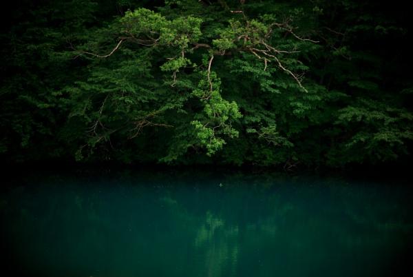 feel green by TeruoAraya