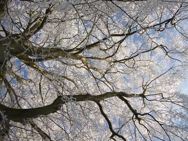 Frost Above by soundaz7