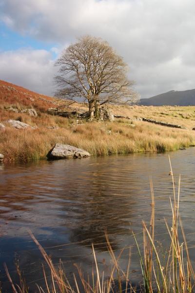 Llyn Dywarchen, Snowdonia by Metty