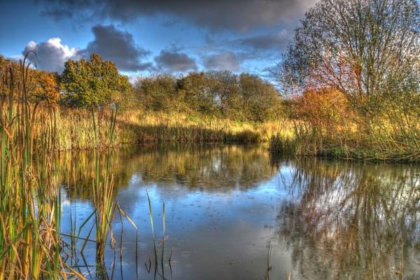 Devon Pond by Cristian