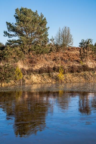 Frozen Pond by JJGEE