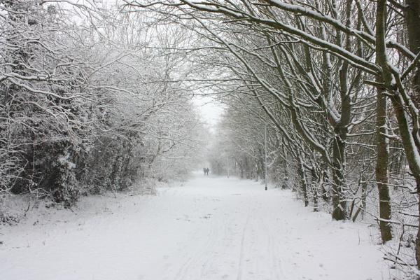 Snowy footpath by ladaman98