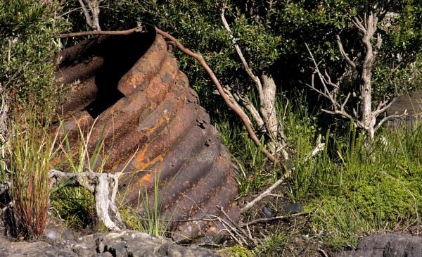Rusty Tank by Elfix6