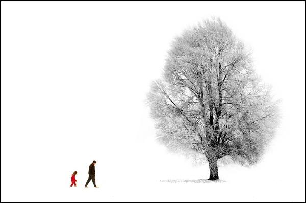 Winter in Caldicot! by Morgs