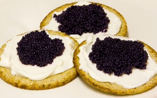 CAVIAR   Black Lumpfish Caviar by rambler