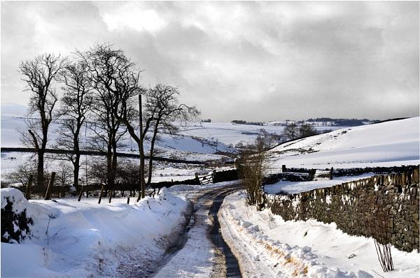 Snow Scene by gmorley