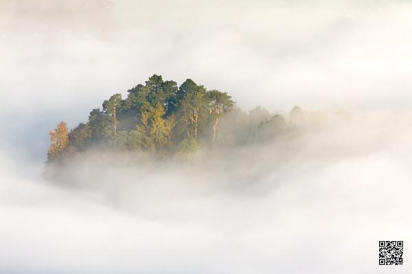 Desert Island Mist ...
