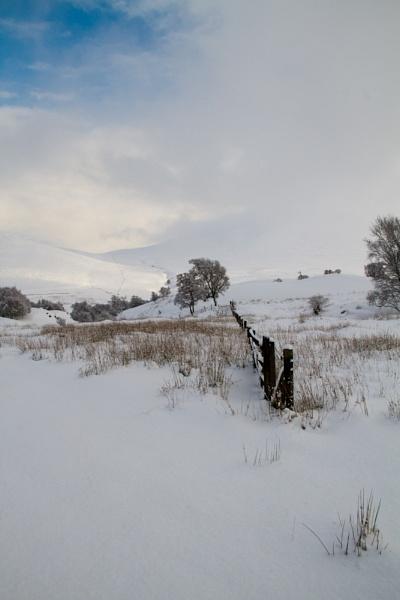 Winter in Glen Esk by moiral