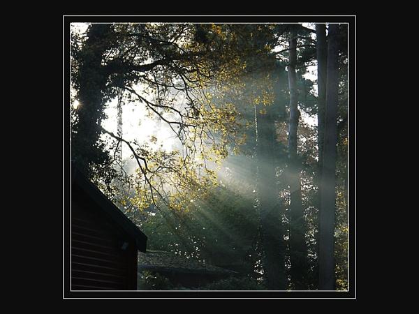 Sunburst by Keith James