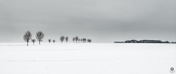 Winter Wonderland by MattB1987