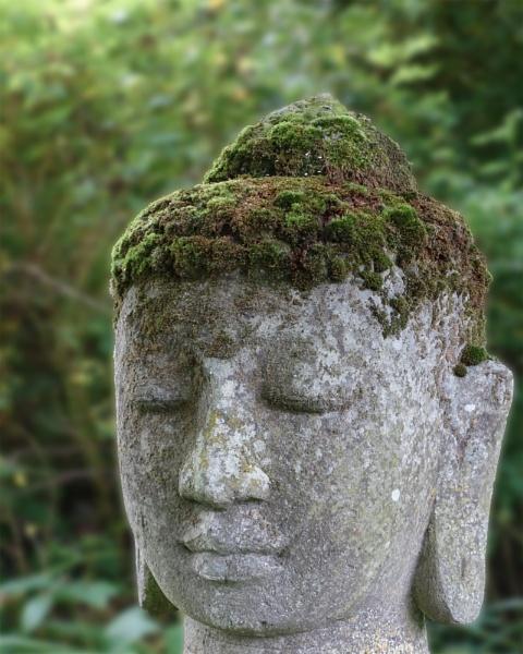 Natural hair by anaustin