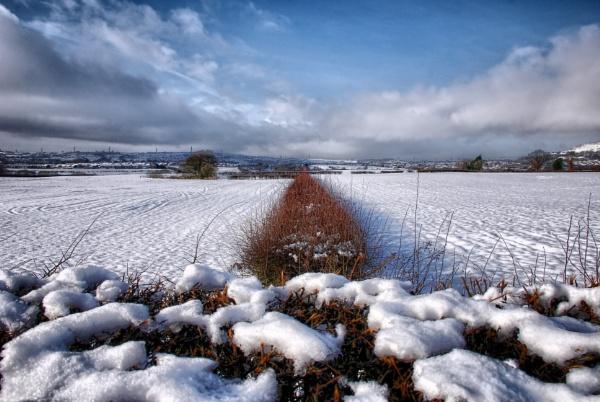 winter landscape by sylwia_sylwia