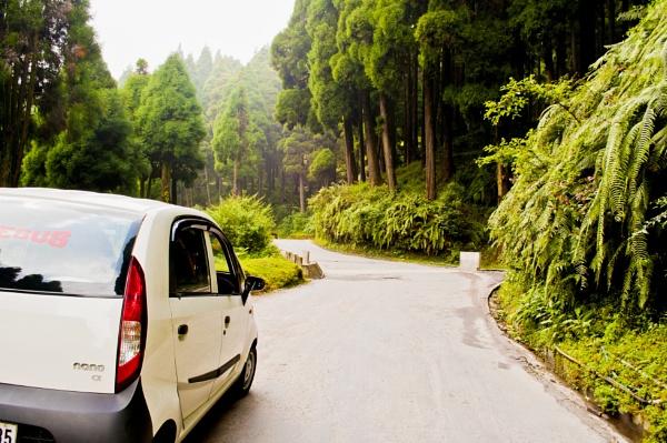 Mountain road through lush green nature. by prabirsenuk