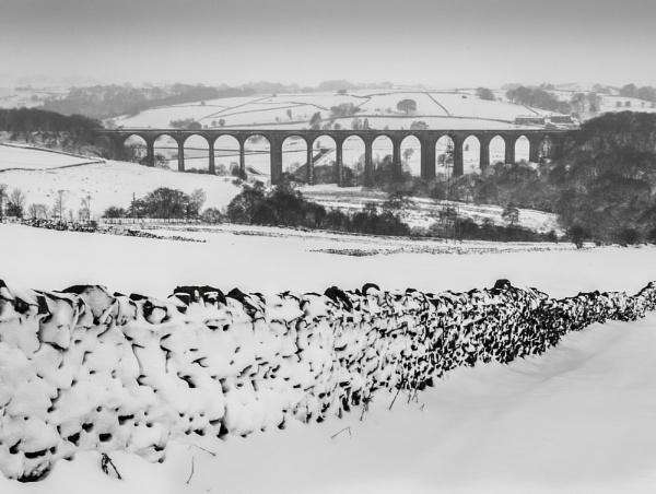 Winters grip by Fotomanic1