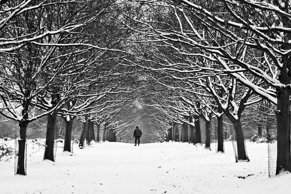 Winter walk by BenHur