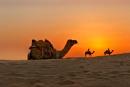 Desert Sunset by MalcolmS