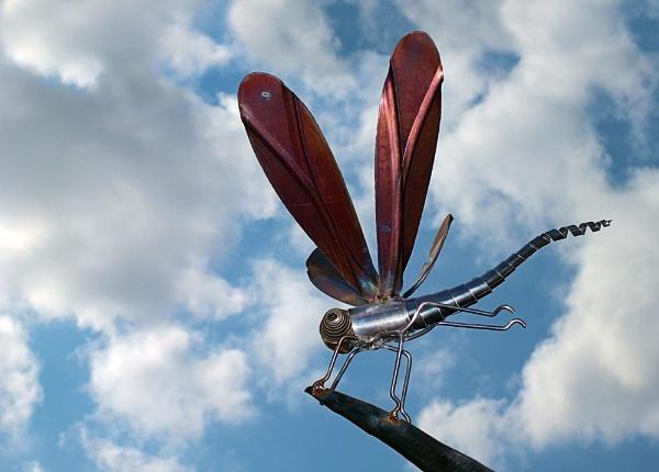 Dragonfly by pamelajean
