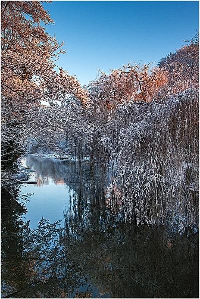 Winter Morning by mlanda