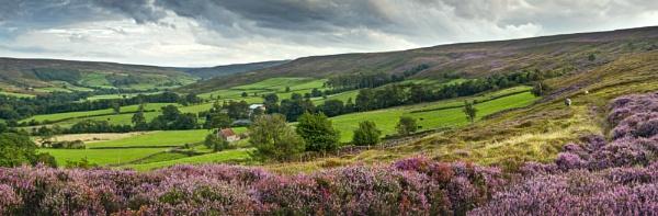 Westerdale in bloom by YorkshireSam