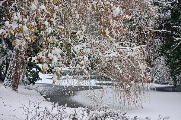 It\'s Snow Time... by Jasper87