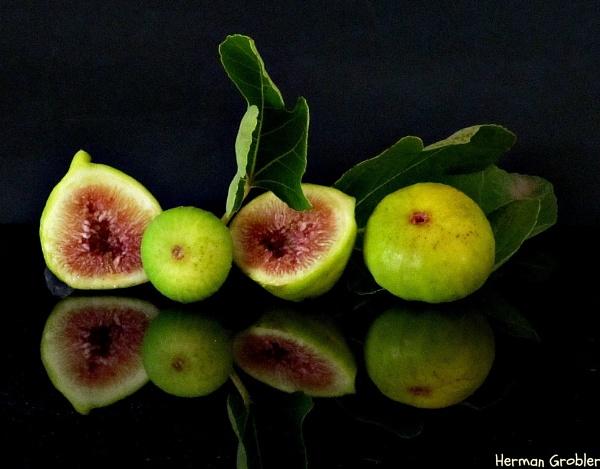 Figs Anyone ? by Hermanus