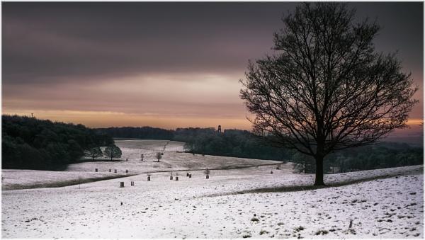 Winters Glow by platzy