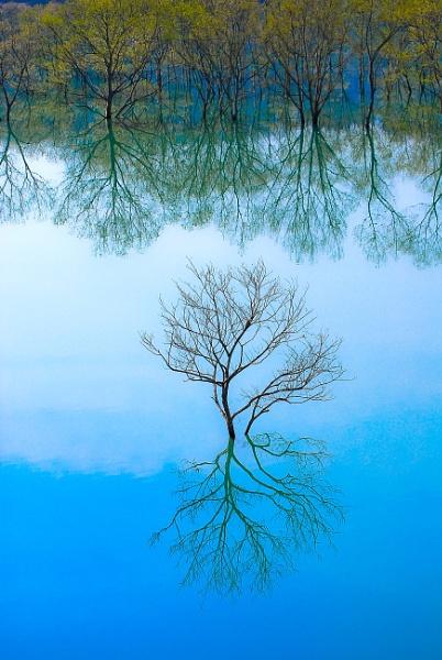 Water Mirror by TeruoAraya