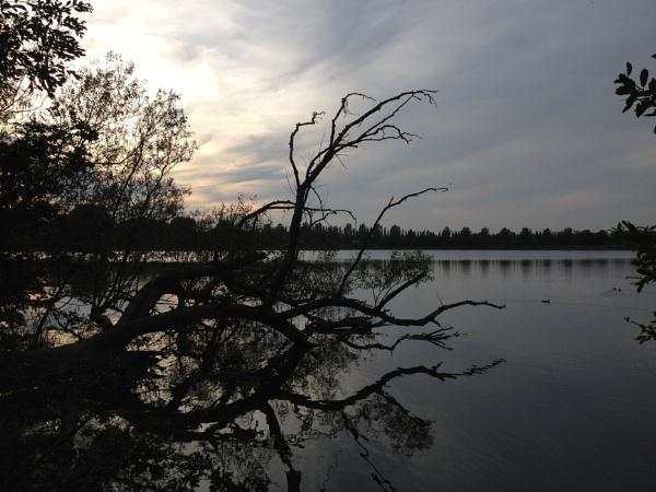 Lake by sidders