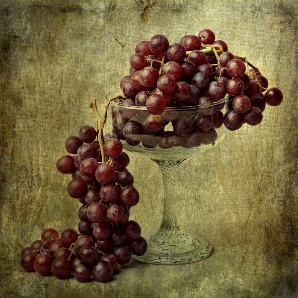 Grapes by cattyal