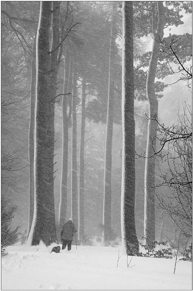 Snowdrifts by MalcolmM