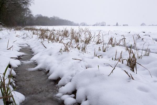 Frozen Field by MrGoatsmilk