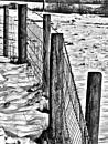 Fence Posts. by Gypsyman