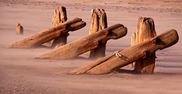 Groynes in a sandstorm by footloose