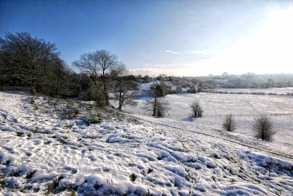 winter landscape 2 by sylwia_sylwia