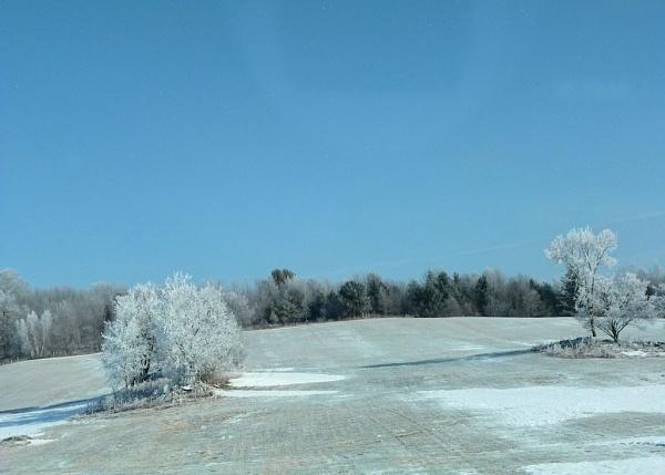 Frosted Fields by Joline