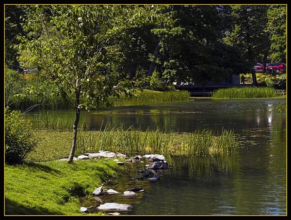 Halifax Public Gardens 3 by JimV