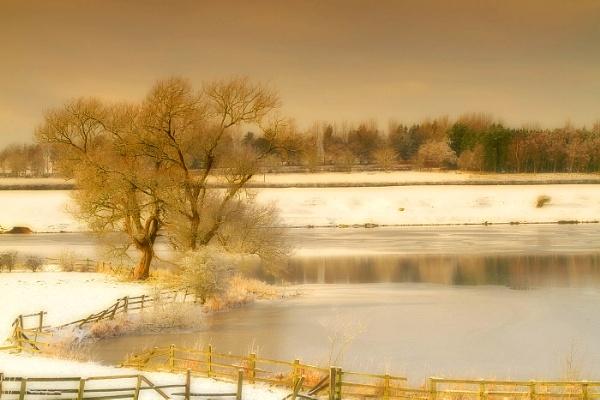 Winter 6 by Trevrox