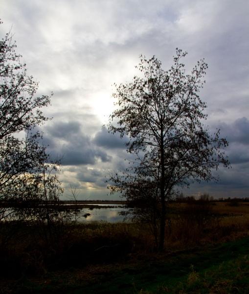 Fenland Sky by rambler