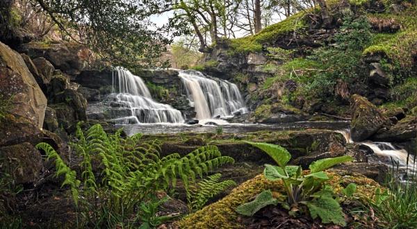 Water Ark Foss by YorkshireSam