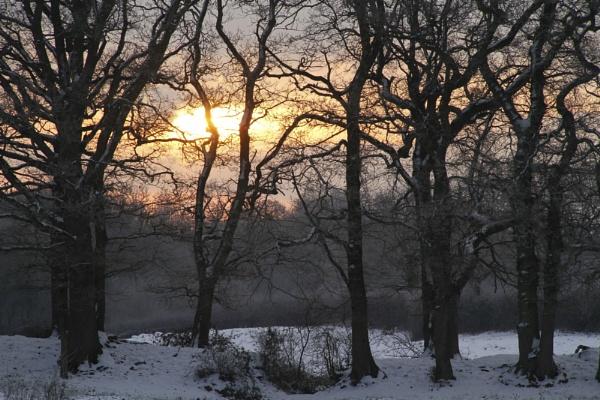 Winter Sunrise by Glen-W