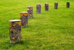 Woodhenge Posts