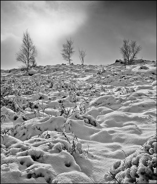Light and textureLight and texture by BillAllsoppPhotography