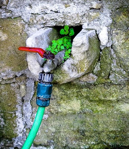rural water supply by meniko
