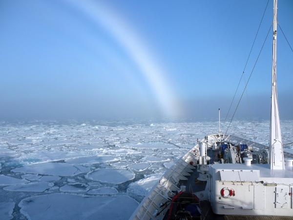 ICE PACK & SNOWBOW by samplum