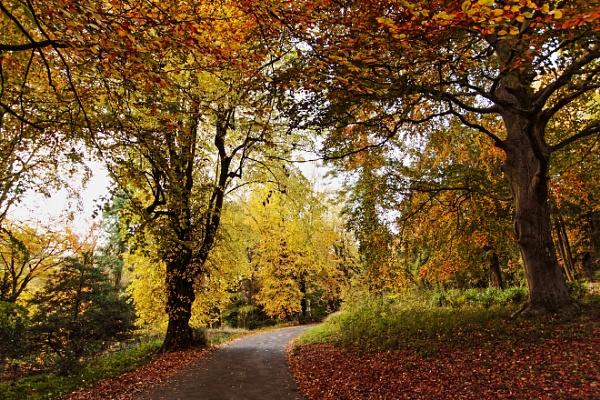 Tyntesfield October by Hogwind