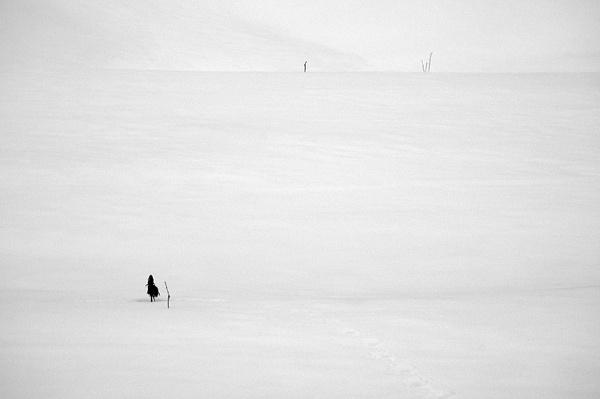 Winter Field by Bzox