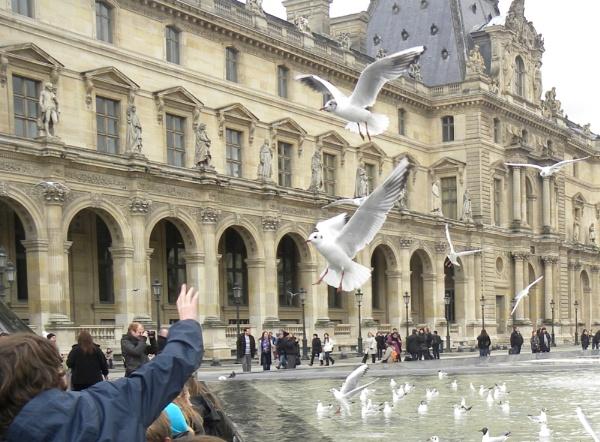 Hungry pigeons by Herrero