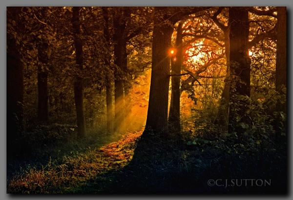 Breaking Dawn by sooty 36