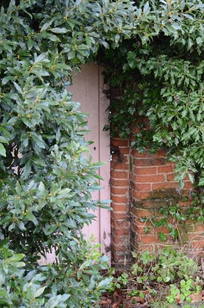 Secret Garden by Metalkoi