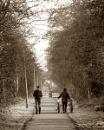Icey Morning walk by camramadbob
